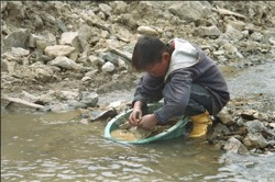 Young boy panning for gold